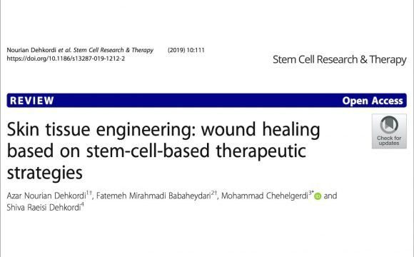 Skin tissue engineering – stem cell and wound healing