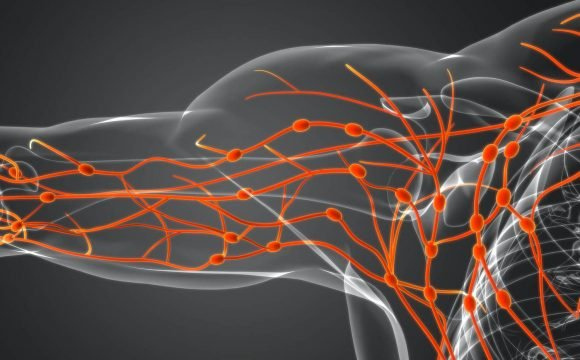 Lymphatic System and Wounds